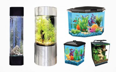 8 Best Corner Fish Tanks with Variable Options of Dimension [Updated 2019]