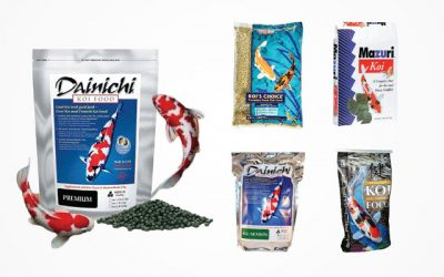 10 Best Koi Food Products in 2019