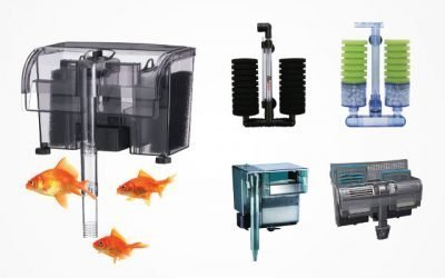 12 Wonderful Fish Tank Filters For Aquatic Hobbyists