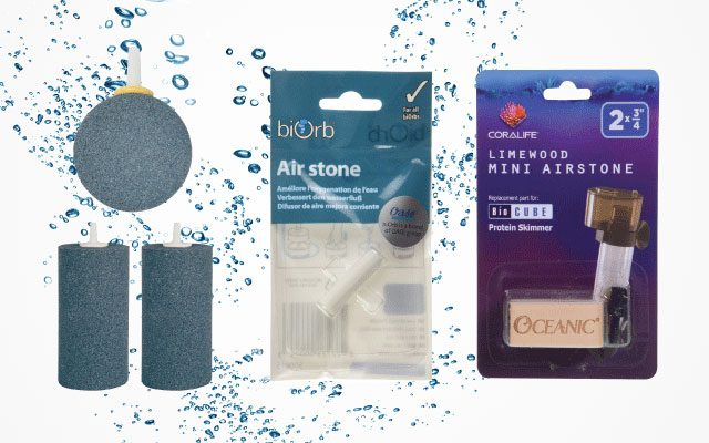 Top Best Air Stones in 2019
