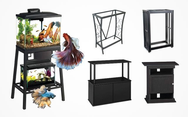 Which Is the Best 10-Gallon Fish Tank Stand ?