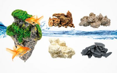 9 Best Aquarium Rocks Make Your Tank Look Gorgeous [Buying Guide 2019]