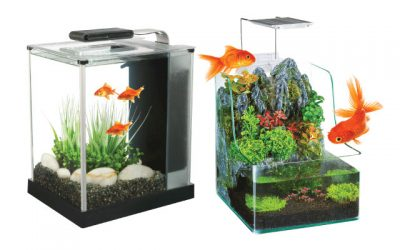 10 Best Tall Fish Tanks in 2019