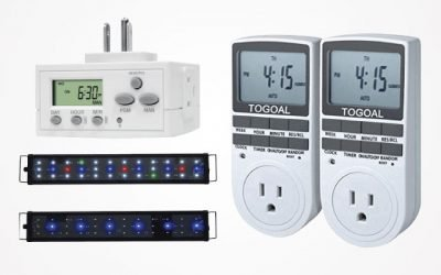 11 Best Aquarium Light Timers That Will Make You Satisfied