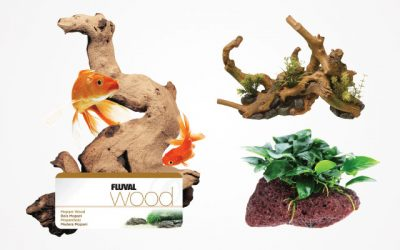 9 Best Aquarium Driftwoods for Your Fish Tank